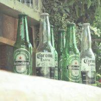地ビール調査